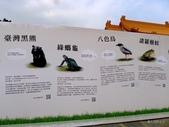 20140319熊貓世界之旅中正紀念堂站:P1810439.JPG