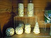 20110115新竹製燭買包一日遊:DSCN5851.JPG