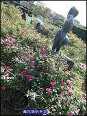 20191110台北新生公園台北玫瑰園秋季玫瑰展:萬花筒10玫瑰.jpg