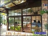 20200705桃園大溪南法玫瑰園:萬花筒J30番鴨.jpg