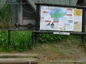 20110713北海道旭川市旭山動物園:P1170092.JPG