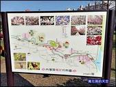 20200212台北內湖樂活夜櫻季:萬花筒3櫻花.jpg