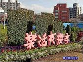 20200212台北內湖樂活夜櫻季:萬花筒7櫻花.jpg