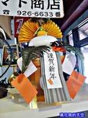 20180102日本沖繩跨年第五天:20180102沖繩771.jpg