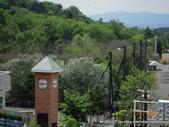 20110713北海道旭川市旭山動物園:DSCN9954.jpg