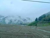 20170225台中武陵農場賞櫻趣:P2370602.JPG