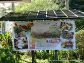 20120107桃源仙谷鬱金花嬌:P1320137.JPG