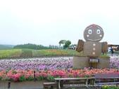 20110714四季彩之丘:P1180150.JPG