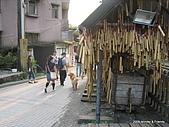 20090322平溪菁桐踏青去:IMG_5837.JPG