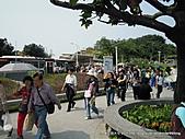 20110421花博大佳河濱園區(倒數第四天):DSCN8008.jpg