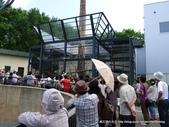 20110713北海道旭川市旭山動物園:P1170094.JPG