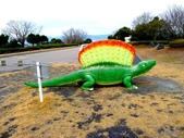 20150207日本鹿兒島櫻島火山一日遊:P1950403.JPG