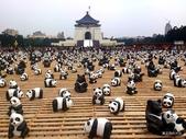 20140319熊貓世界之旅中正紀念堂站:DSC_4408-001.JPG