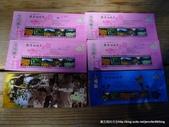 20120107桃源仙谷鬱金花嬌:P1320142.JPG