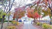 20171113日本長野輕井澤王子購物廣場(Karuizawa Prince Plaza):201711輕井澤1761.jpg
