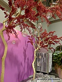 20110411&爭艷館~台灣花卉展:P1100919.JPG