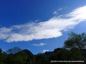 20120107桃源仙谷鬱金花嬌:P1320144.JPG