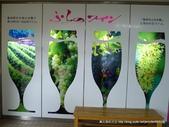 20110715富良野葡萄酒酒莊:P1190093.JPG