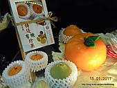 20110115新竹製燭買包一日遊:DSCN5855.JPG