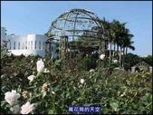 20191110台北新生公園台北玫瑰園秋季玫瑰展:萬花筒6玫瑰.jpg