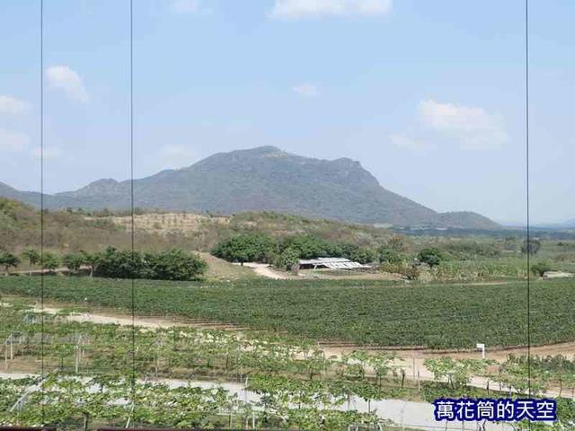 萬花筒的天空176華欣.jpg - 20190204泰國華欣Monsoon Valley Wineyard