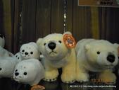 20110713北海道旭川市旭山動物園:DSCN9853.JPG