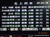 20110212花蓮油菜花第一追:DSCN7333.JPG