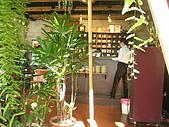 20081204新社花海古堡:IMG_3897.jpg