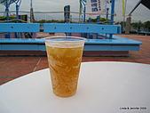20090724宜蘭青蔥酒堡蘭雨節:IMG_8192.JPG