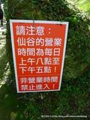 20120107桃源仙谷鬱金花嬌:P1320155.JPG