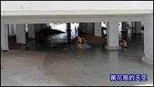 20200820台南河樂廣場:萬花筒台南A18.jpg