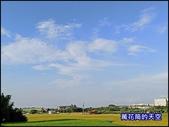 20200705桃園平鎮台灣番鴨園區:萬花筒J52番鴨.jpg