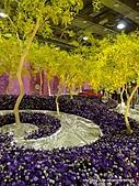20110411&爭艷館~台灣花卉展:P1100923.JPG