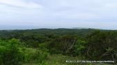 20110523社頭自然公園:P1130348.jpg