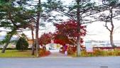 20171113日本長野輕井澤王子購物廣場(Karuizawa Prince Plaza):201711輕井澤1741.jpg