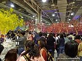 20110411&爭艷館~台灣花卉展:P1100925.JPG