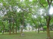 20160609嘉義公園射日塔:P2310155.JPG