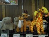 20110713北海道旭川市旭山動物園:DSCN9856.JPG