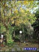 20200705桃園大溪南法玫瑰園:萬花筒J12番鴨.jpg