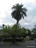 20090724宜蘭青蔥酒堡蘭雨節:IMG_8059.JPG