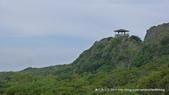 20110523社頭自然公園:P1130350.jpg