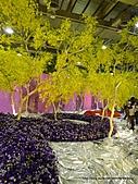 20110411&爭艷館~台灣花卉展:P1100926.JPG