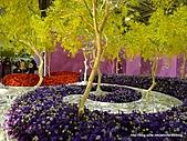 20110411&爭艷館~台灣花卉展:P1100927.JPG