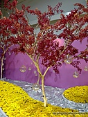 20110411&爭艷館~台灣花卉展:P1100928.JPG