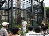 20110713北海道旭川市旭山動物園:DSCN9969.jpg