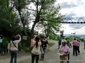 20110713北海道旭川市旭山動物園:P1170491.JPG