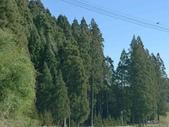 20150208日本鹿兒島宮崎第三天:P1960130.JPG