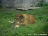 20110713北海道旭川市旭山動物園:DSCN0024.jpg