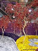 20110411&爭艷館~台灣花卉展:P1100930.JPG