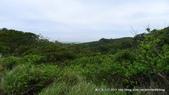 20110523社頭自然公園:P1130358.jpg